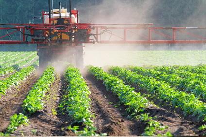 landwirtschaft-bodentest